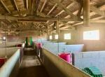 achat appartement barcelone propriété agricole Montseny 15